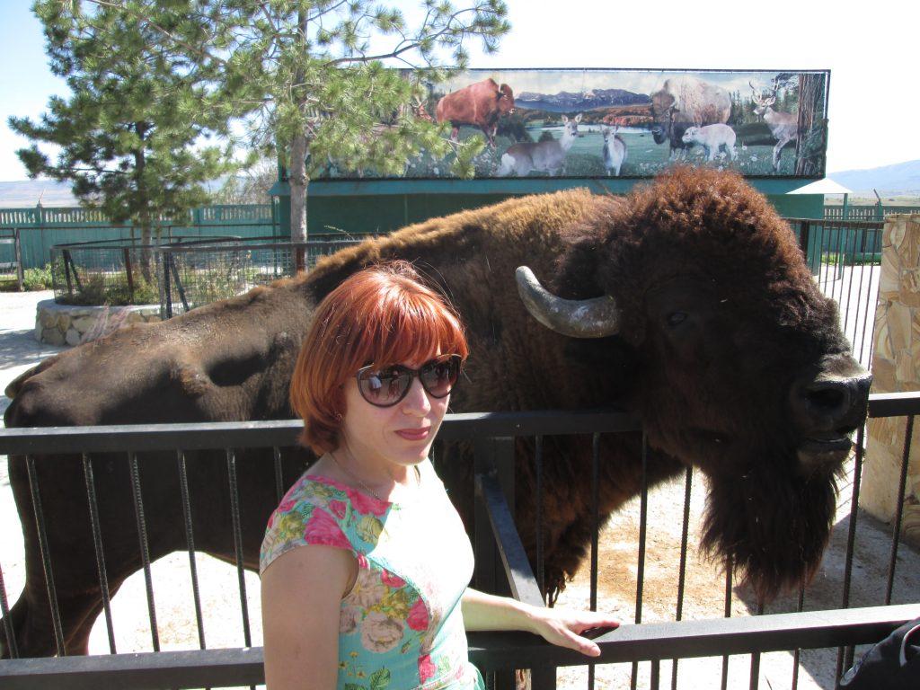 bizon-3